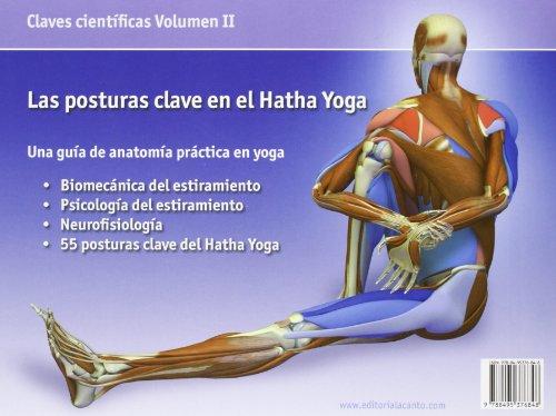 Las posturas clave en el hatha yoga   Peso.es